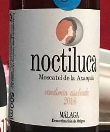 Noctiluca-2016