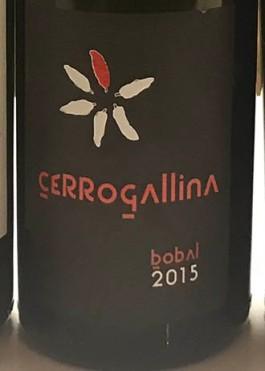 Cerrogallina
