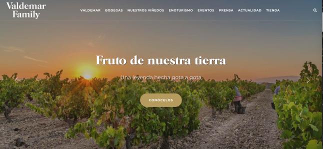 Nueva web de Bodegas Valdemar